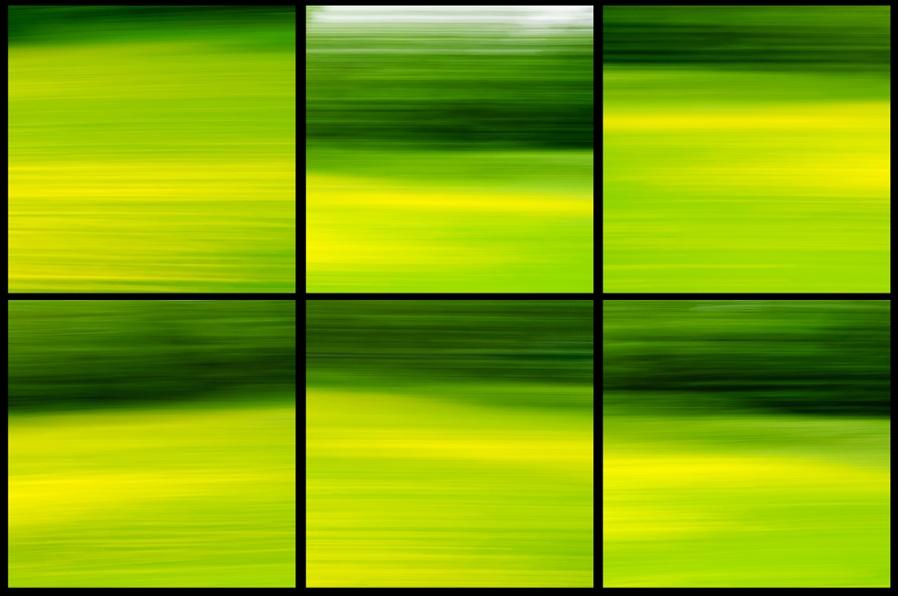 Blurred Fields