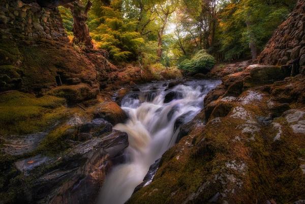 Natures harmony by brzydki_pijak