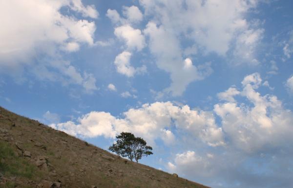 Summer evening cloud by michaelfox