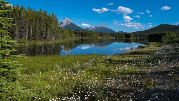 Rocky Mt. Meadow by StrayCat