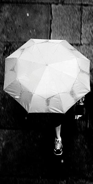 Rain by dannyr