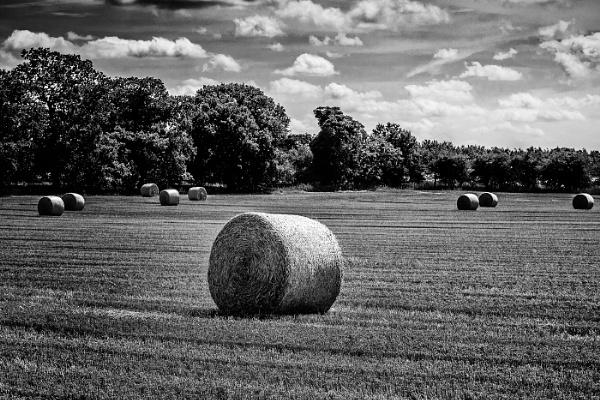 Haystack by bobbyl