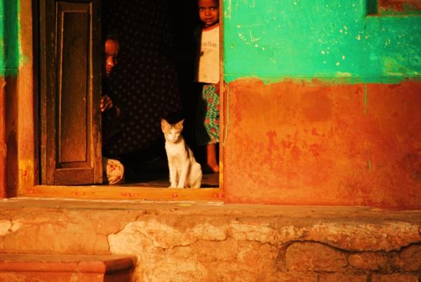 Home sweet home... by Chinga