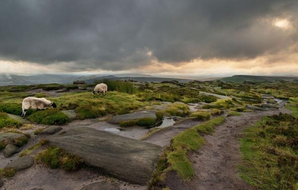 Moorland Vista by Trevhas