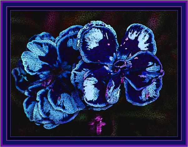 bleu by estonian