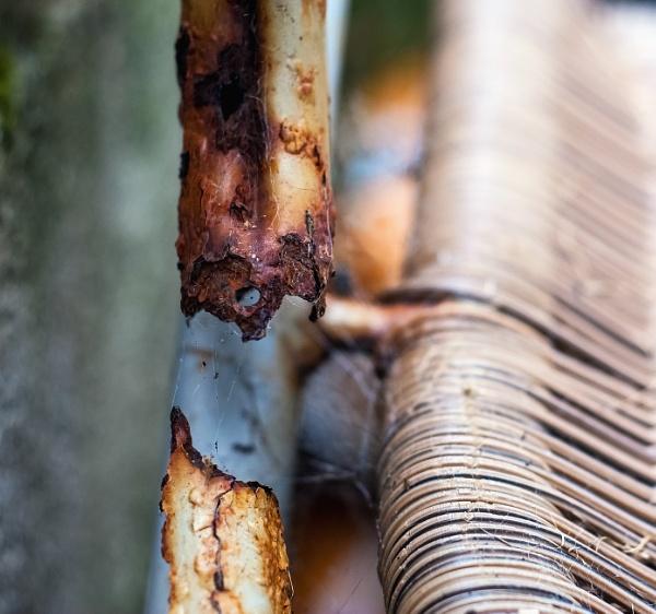 Rusting away by Madoldie