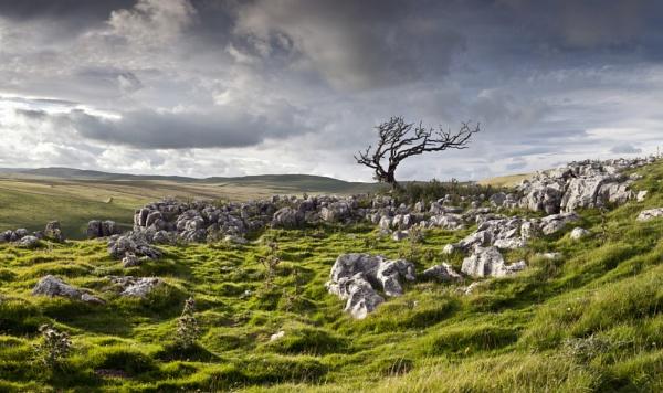 Limestone Landscape by YorkshireSam
