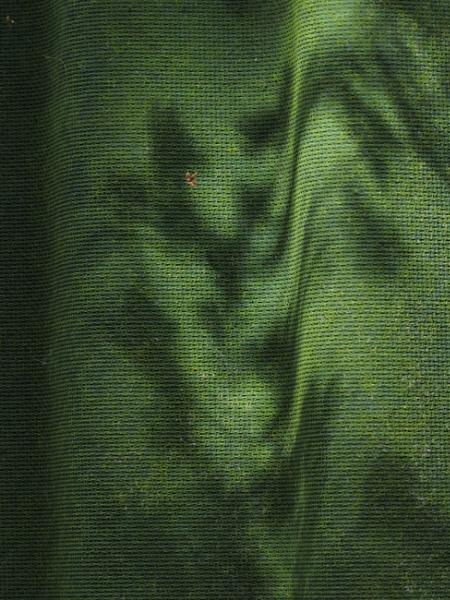 Green Shadow Curve by ericfaragh