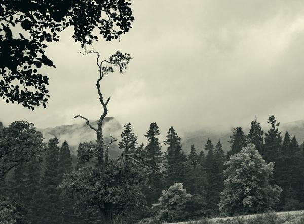 Moody Mountains by Irishkate