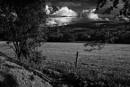 Wood Lane Parbold- a favourite walk by AlanJ