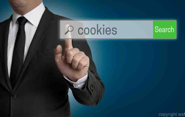 cookies internet browser is operated by businessman by wsfeph