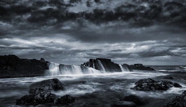 Forster Evening by BarryBeckham