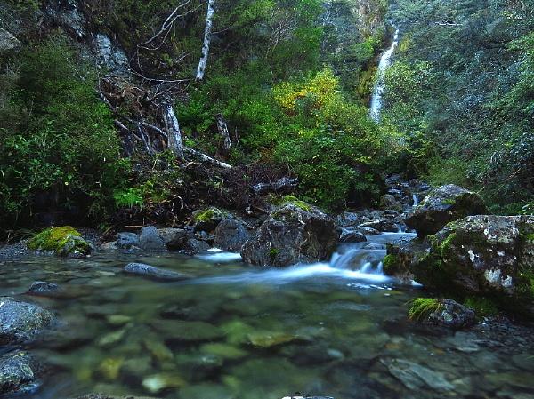 Avalanche Creek Waterfall 1 by DevilsAdvocate