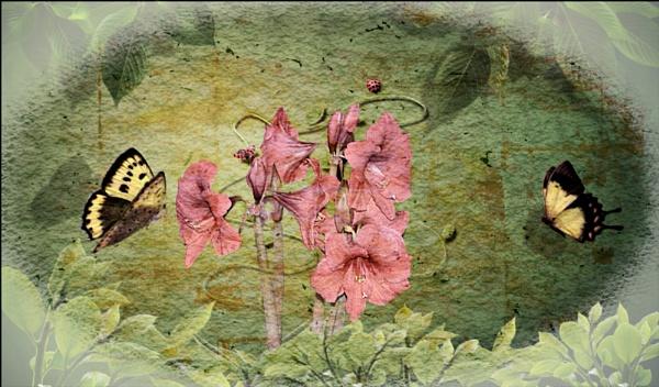 Fluttering by dawnmichelle