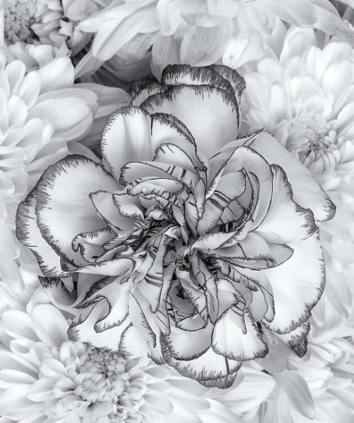 Flower by Owdman