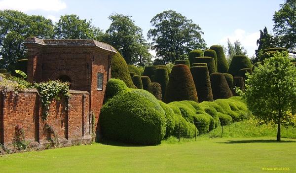 Packwood House Gardens by SteveWood14458