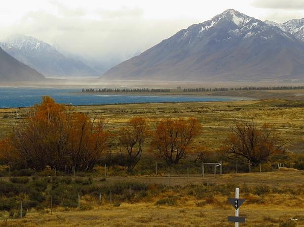 Lake Tekapo Head 6 by DevilsAdvocate