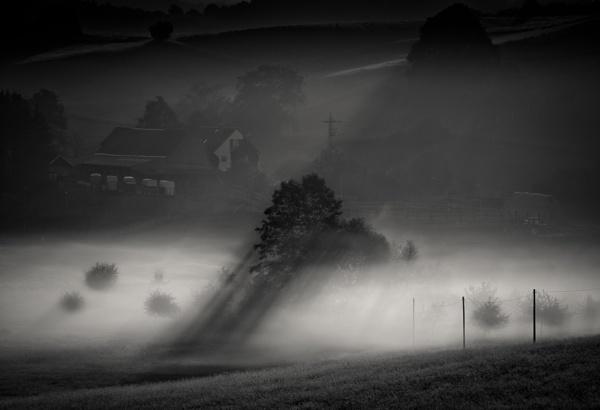 Valley of Light by mlseawell