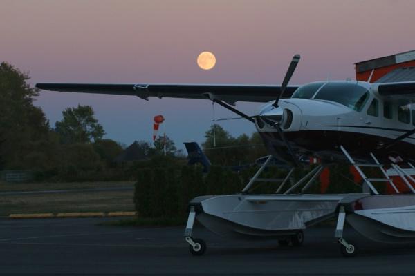 Moonlight Flight by tonyguitar