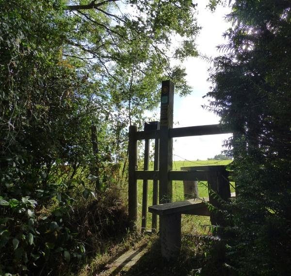 Quiet path by Mazza46