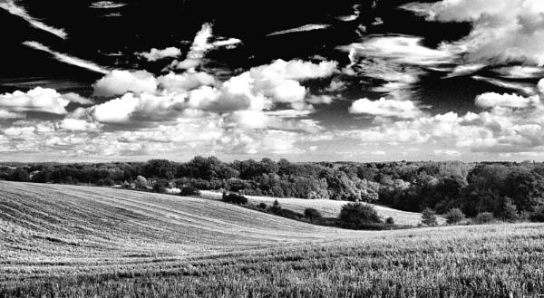 Summer fields by af1