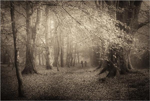 Dogwalkers by MalcolmM