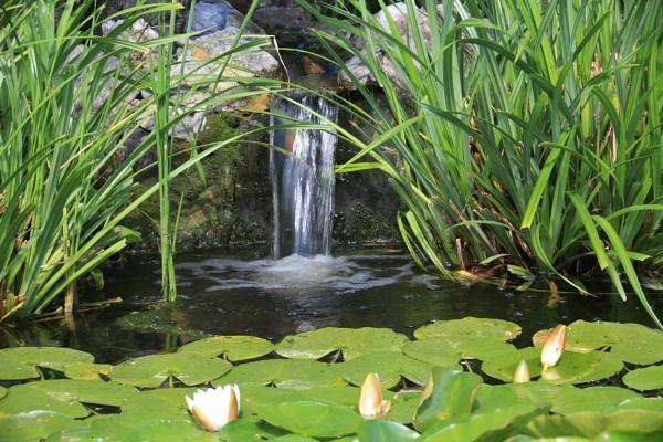 Garden wtaerfall by brianwakeling
