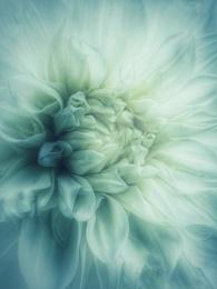 Photo : Softly