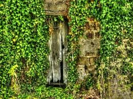 Really Old Barn Door.