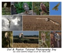 Promotion - Owl & Raptor photography day by philhomer at 25/08/2016 - 11:40 AM