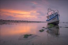Sunrise over the Estuary