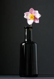 Bottle & Flower