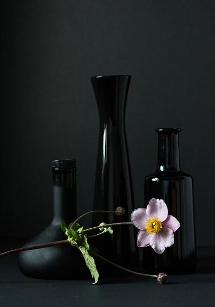 Bottles & Flower by kaybee