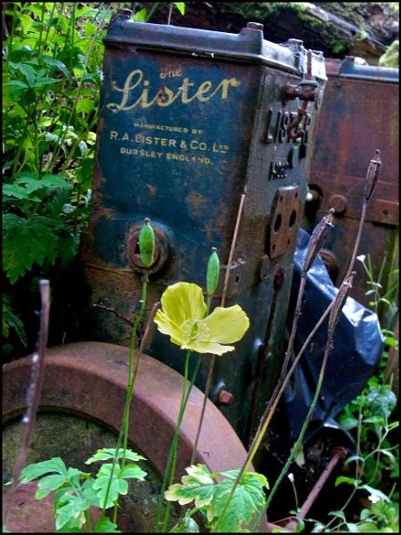 "Lister Model ""D"" Stationary Engine"
