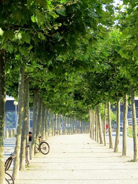 Dusseldorf Promenade by DrTony24