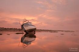 Dawn blush...