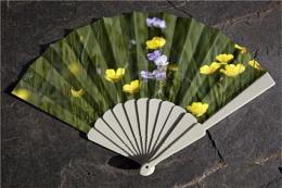 A Fan For All Seasons