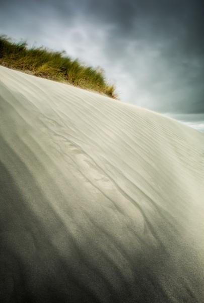 Dune by true