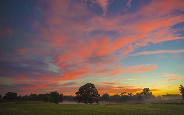morning mist by bigjim147