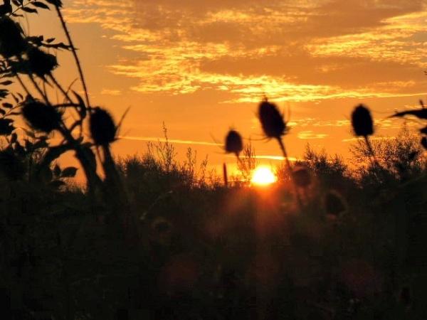 Morning sun by Gary66