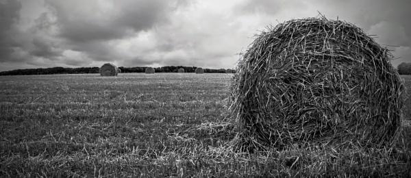 Bales of hay by Madoldie