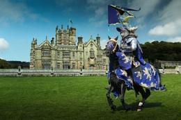 Blue Knight v2