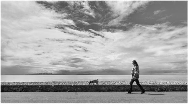 Walking the dog by franken