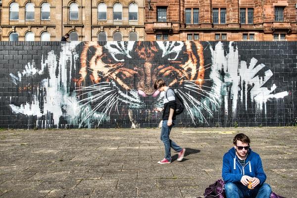 Glasgow Tiger by AndrewAlbert