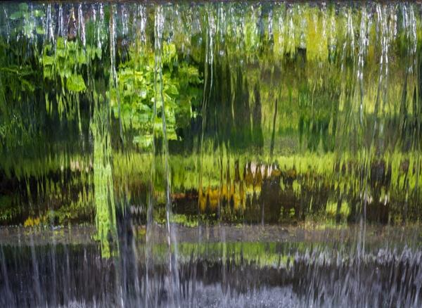 Running Green by jasonrwl
