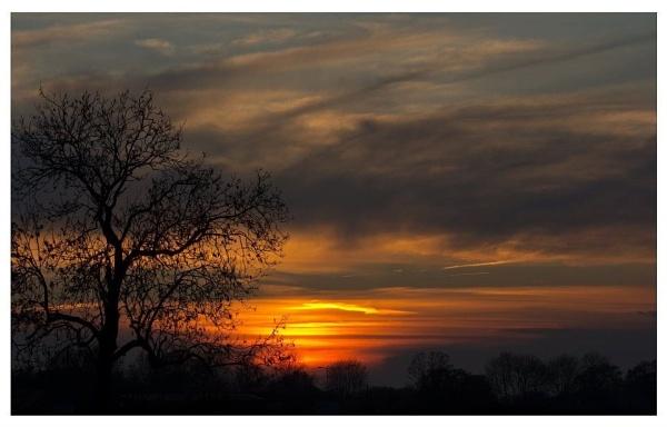 Sunset by Diyena