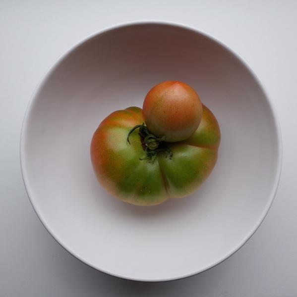 Tomato by josa
