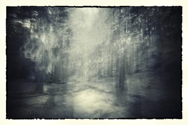 Woodlands by gerainte1