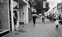 Street Scene Brentwood