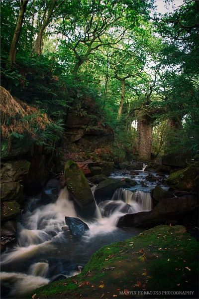 HEALEY DELL by buxton